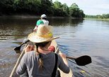 3-Day Wildlife Tour in the Amazon from Iquitos, Peru