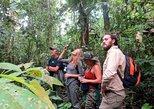 4-Day Amazon Wildlife Adventure in Pacaya-Samiria Reserve from Iquitos, Peru