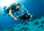 From Dubai: Discovery Scuba Diving trip with live BBQ lunch in Fujairah