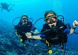Two Dives for certified divers and Snorkeling with live BBQ lunch