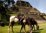 Central America - Belize: Horseback Riding Tour to Xunantunich
