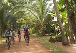 explore siem reap's countryside on a bicycle