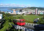 Shore Excursion: Wellington Highlights Small Group Tour