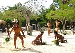 Private Samana Day Trip from Santo Domingo with Buffet Lunch