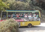 Cabrio Bus Safari and Village Tour