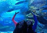 Antalya Aquarium including Hotel Pickup