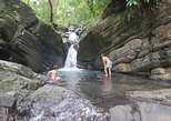 TravelToe Exclusive: Early Access to El Yunque National Forest Park with a Certified Tour Guide