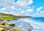 South Mauritius Private Day Tour: Tea Factory, Nature Park and Wild South Coast