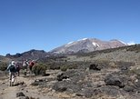 Mount Kilimanjaro Short Trek from Arusha