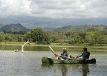 Canoeing Safari at Lake Duluti and nature Walk