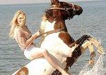Horse Safari in Marmaris