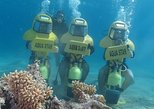 Aqua Star Diving