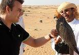 Falcon 1—Private Dubai Falconry Safari