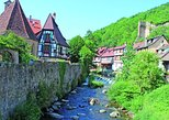 Villages of Alsace half day tour from Colmar