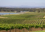 Hunter Valley Wine and Wildlife Tour from Sydney with Walkabout Wildlife Park