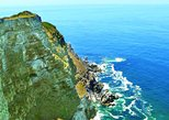Half Day Cape Point Tour from Cape Town