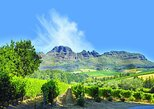 Cape Winelands Guided Day Tour from Cape Town