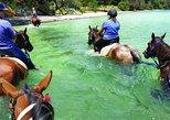2-Hour Beach Horse Ride Experience on Waiheke Island