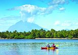Jiquilisco Bay Biosphere Reserve and Mangrove Tour