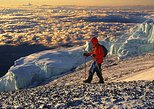 Private 8-Day Kilimanjaro Climbing Adventure
