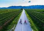 Cycling & wine in Dalmatian Hinterland
