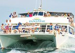 Whale Watching Adventure From Panama City