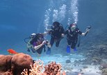 DAY SCUBA DIVING TOUR FROM SHARM EL SHEIKH