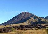 Pacaya Volcano Excursion