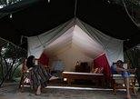 Luxury Camping at Yala National Park with Leopard Safari and BBQ