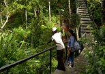 Ebony Forest Reserve Chamarel: Classic Visit Ticket