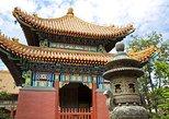 Beijing City Coach Tour: Hutongs, Beijing Zoo and Lama Temple