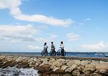 Cycle Tour of Sanur Village with Seawalker Experience