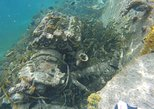 Boat Wreck and Reef Snorkling Eco-Tour