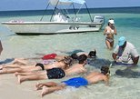 Stingray and Multi-Reef Snorkeling Eco-Tour