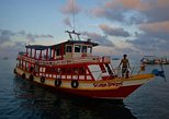Diving Trip at Koh Tao from Koh Samui for certified divers