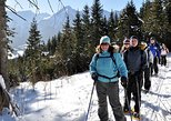 Full Day Snowshoeing in High Tatras from Zdiar