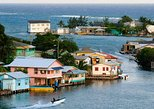 Island Adventure: East End Tour & Mangroves