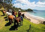 Roatan Half-Day Combo Horseback Riding with Zip Line Monkey & Sloths & Snorkel