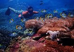 Snorkelling Day Trip From Nusa Lembongan