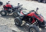 ATV Borneo, Desa Cattle Dairy Farm and Nabalu Town