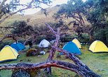 Camping Tour Cajas National Park