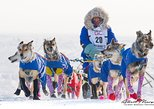 2019 Iditarod Race Start