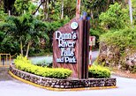 Dunn's River Falls Tour from Lucea
