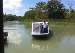 Zipline and Tortuguero Canal Tour from Limon