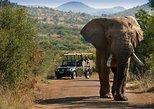 3 Hour Pilanesberg Morning Open Vehicle safari drive (Self drive)