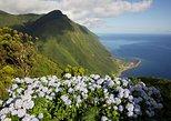 Full-Day São Jorge Island Tour leaving from Faial Island