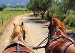 Wine & Horse Carriage Tour