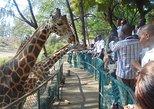 City Tour of Mombasa Full day