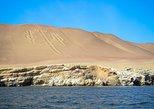 Full day: Ballestas & Nazca Lines