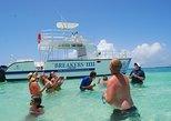 Shared Catamaran tour